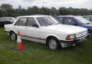 P5110059