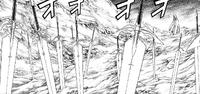 Las Espadas de las caídas