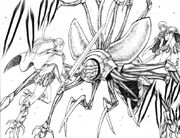 Insectile Awakened Being
