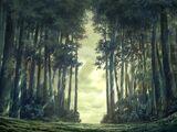 Bosque de Egon