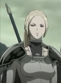 Guerrera Desconocida 9 Anime