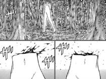 Gli arti inferiori di Riful che camminano nel bosco cap 132