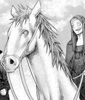 Dae a cavallo