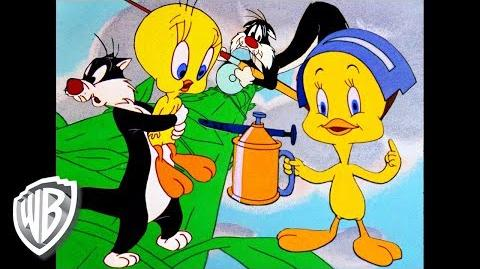 Looney Tunes Best of Tweety Bird and Sylvester Classic Cartoon Compilation WB Kids