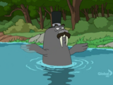 Mr. Flippers