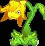 Spit Flower