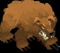BM-Bear.png
