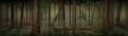 BG Forest Pan V3