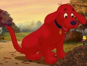 Well, That's Big Red Dog