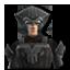 Zygerrianguard
