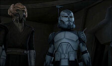 Wolffe and plo