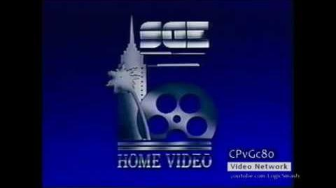 Shapiro Glickenhaus Home Video
