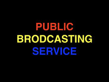 Public Brodcasting Service.001
