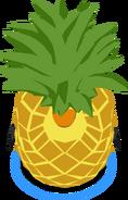 Pineapple Costume IG