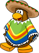 Festive Sombrero and Poncho
