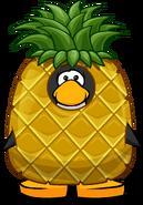 Pineapple Costume PC
