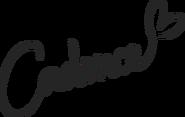 Cadence's Signature