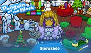 Snowshee