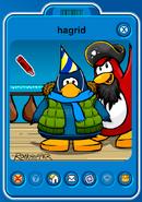 HagridPlayercard