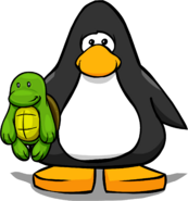 Turtle PC