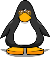 Aviator Sunglasses PC