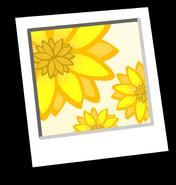 Sunflowers Background Icon