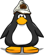 Brown Puffle Hat PC