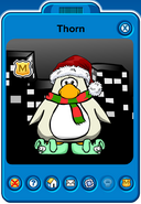 Thorn Player Card - Early December 2018 - Club Penguin Rewritten (2)