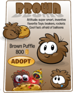 Brown Puffle Adopt Catalog