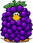 Grape Bunch Costume PC
