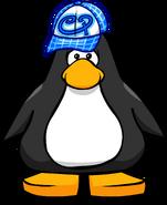 Blue Skater Hat PC