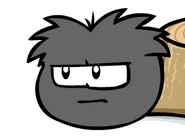 Mission2blackpuffle