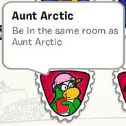 Aunt Arctic SB