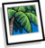 Tropical Palm Background Icon