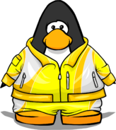 Clothing 4266 player card