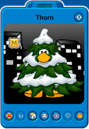 Thorn Player Card - Early December 2018 - Club Penguin Rewritten