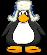 Blue Fuzzy Hat PC