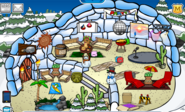 Penswim Igloo