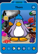 Thorn Player Card - Late October 2018 - Club Penguin Rewritten (2)