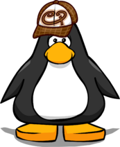 Brown Skater Hat PC