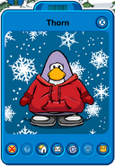 Thorn Player Card - Mid November 2018 - Club Penguin Rewritten (3)