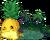 Pineapple Igloo