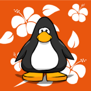 Orange Hawaiian Background PC