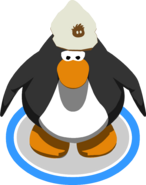 Brown Puffle Hat IG