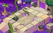 Box Dimension Plants