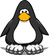 Snow Monkey Feet PC