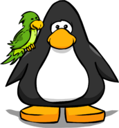 Green Parrot PC