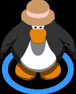Brown Fedora IG
