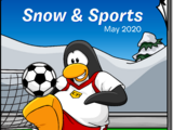 Snow and Sports