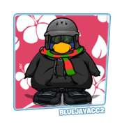 Featured Fashions bluejayacc2